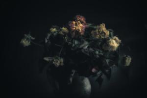 FA__9521-Edit-Edit
